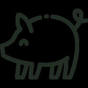 Hel- og halvstegt gris